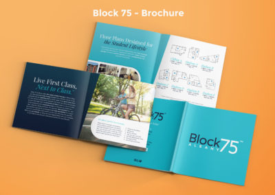 Block 75 Marketing Materials